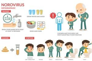 6 Tips To Prevent The Spread Of Norovirus: The Science Behind Not Getting Sick